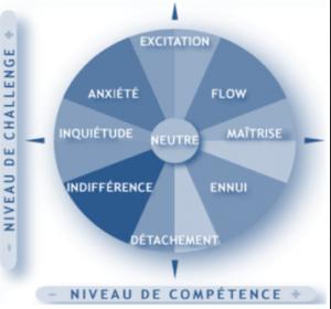 niveau-de-competence